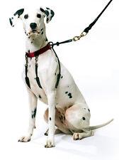 Sporn Training Halter No Pull Dog Harness Collar SM RED