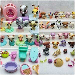 Lot of 100 Littlest Pet Shop LPS Figures & Accessories Authentic Used Various