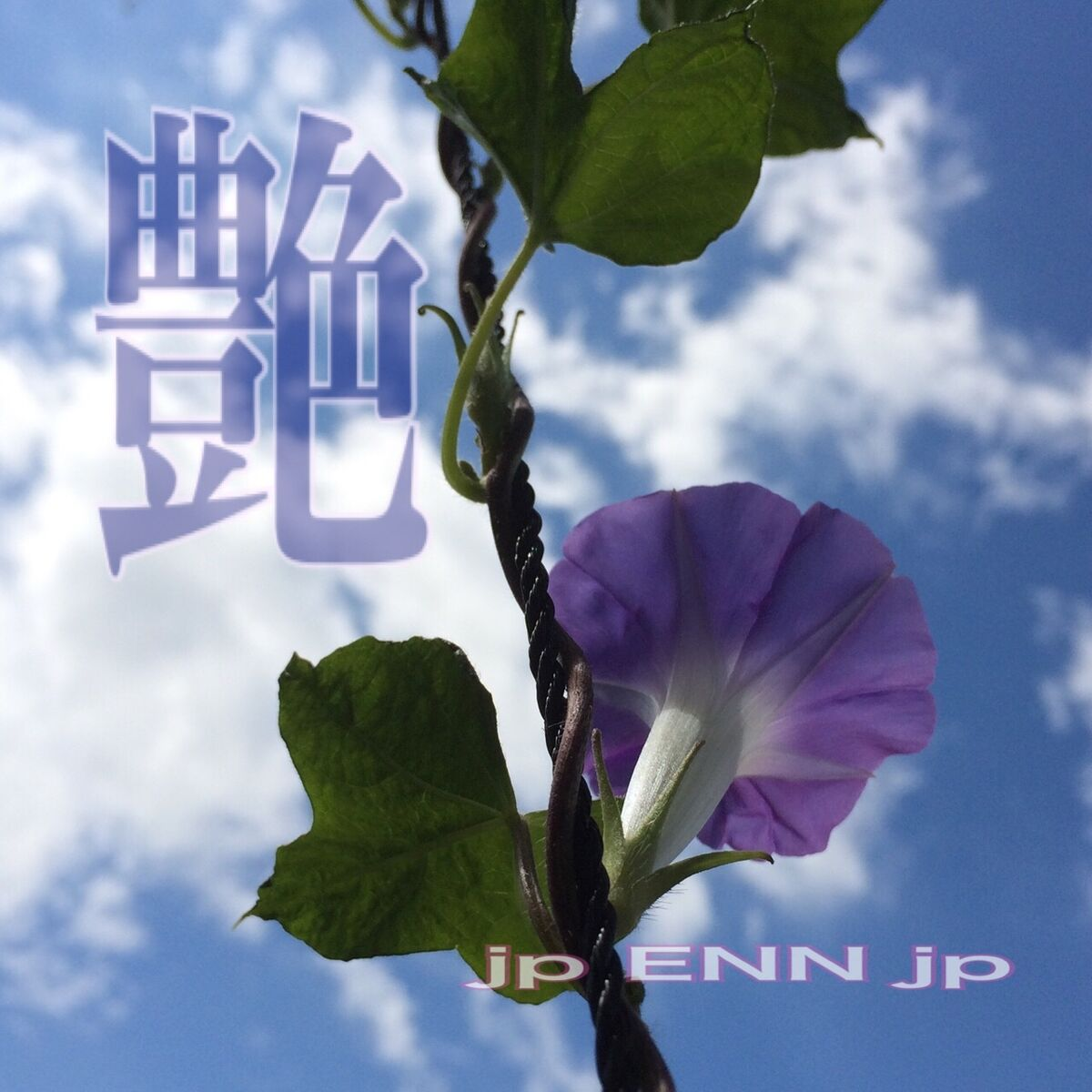 jp ENN jp