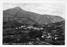 Cartolina Rovegno Panorama
