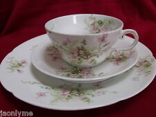 LIMOGES THEODORE HAVILAND trio dessert/cup/saucer set pink flowers green foliage