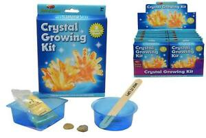 Education set Toy Crystal Growing Kit In Colour Box Children Kids
