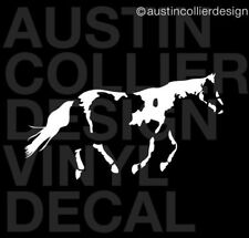 "11"" PAINT HORSE vinyl decal car truck window trailer sticker - equestrian equine"