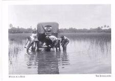 "+PC-Postcard-""Vehicle...Stuck In A Hole"" *Everglades, FL   (A265-7)"