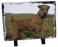 More details for lakeland terrier dog photo slate christmas gift ornament, ad-lt1sl