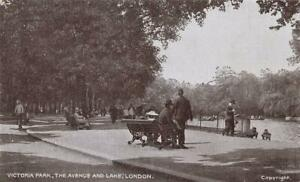 Early VICTORIA PARK Avenue and Lake   LONDON  Postcard