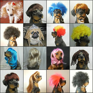 Cute  Pet wig/wigs supllier Pet Dog cats wig Adorable Many Types Small Size