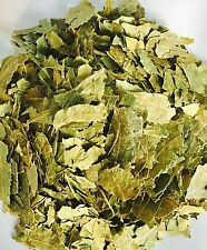 100g ORGANIC NEEM LEAVES GRADE A QUALITY PRODUCT