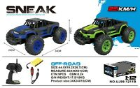 1:12 RC SNEAK OFF-ROAD Buggy High Speed FAST Remote-Control Off-Road Car RTR Toy