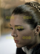 Photo - Diana Rigg posing for a portrait in 1968 (2)