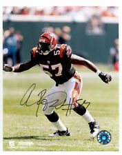 Autographs Photo Images 25000+ 2 Dvd Celebrity Autographed Old american football