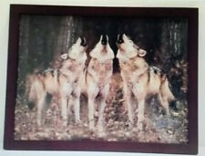 BEAUTIFUL 3 Howling Singing WOLVES In The Woods FRAMED PRINT Collectible NICE!