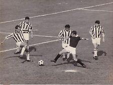 calcio football Foto Azione Torino-Juventus- Ferrini-salvadore 1966