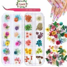 2 Boxes Nail Art Dried Flowers,Unime 24 Colors Dry Flowers Mini Real Natural Flo