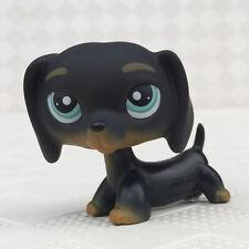 Littlest Pet Shop LPS #325 Black Dog Dachshund With Blue Eyes Puppy Chien Teckel