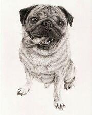 Original Art - Pug - Portrait - Drawing - Fountain Pen - A4 - Signed by Artist
