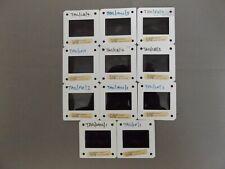 More details for collection of 11 x press 35mm slides - 1981 williams fw07 - alan jones reutemann
