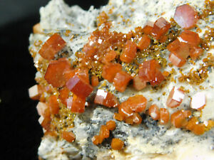 A Natural Vanadinite Crystal Cluster With Dozens of Dark ORANGE Crystals! 196gr