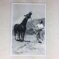 DRIFTWOOD Named Quarter Horse Stallion Postcard