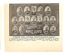 Guelph Maple Leafs  Ontario Canada 1911 Baseball Team Picture RARE