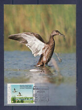 cma/ carte maximum   Portugal   canard  sauvage     1976
