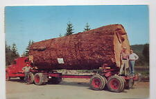 Truck Pulling Giant Fir Log WA-OR Postcard 1950s