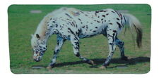 APPALOOSA HORSE LICENSE PLATE 6 X 12 INCHES NEW ALUMINUM MADE IN USA