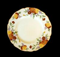 Beautiful Royal Doulton Marigold Dinner Plate
