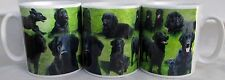 Black Flatcoated Retriever Mug Ceramic Collage Scenes Cup Hand Decorated in UK