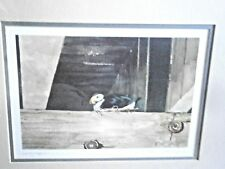 Nesting Puffin Signed N Stonington Taylor Framed Lithograph Signed and Numbered