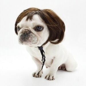 Fashion Pet Dog Wig Costume Synthetic Short Fake Hair Pet Dog Party Decor Hot!