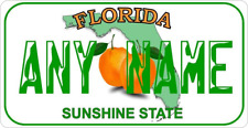 28cm x 14.5cm  FLORIDA PERSONALISED  METAL SIGN - LICENCE PLATE STYLE MIAMI  154