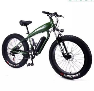 fat tyre electric bike 1000w