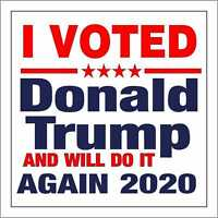 I Voted for Donald Trump and Will do it Again 2020 Bumper Sticker Decal BEC-116