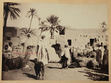 Algérie Tunisie Egypte Afrique du Nord Orient Vintage albumen albuminé, ca 1875