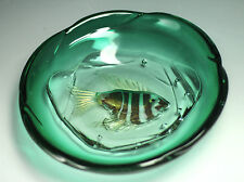 European Art Glass Bowl - Dimensional Exotic Fish Encased in Green Glass