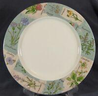 "Royal Doulton WILDFLOWERS TC1219 Dinner Plates 11"" Everyday Floral Rim"