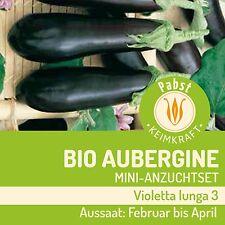 BIO Aubergine Anzuchtwürfel 108350 Sämereien Gemüse Komplettset Anzuchttopf Saat