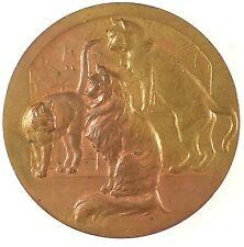 France feline award CATS bronze 50mm