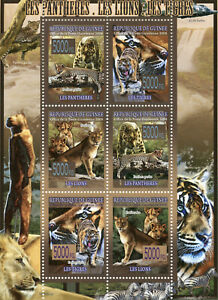 Guinea Wild Animals Stamps 2008 MNH Panthers Lions Tigers Fauna 6v M/S