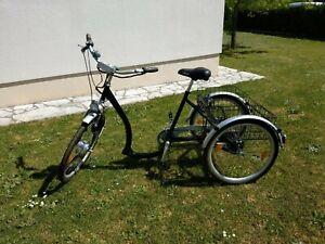 Schachner Elektrofahrrad Dreirad mit Elektromotor und großem Gepäckträger