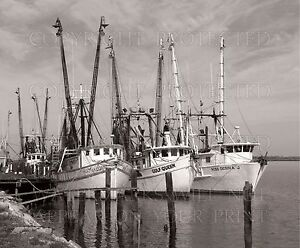 Shrimp boats Gulf of Mexico fishing Apalachicola FL sepia 5x7 or request digital