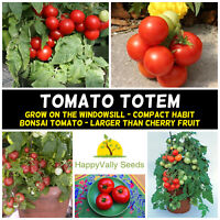 TOMATO 'TOTEM' 15 Seeds HEIRLOOM summer veggie COMPACT BUSH vegetable garden POT