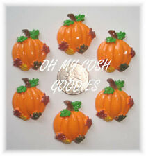 6PC FALL HARVEST PUMPKIN THANKSGIVING FLATBACK RESIN 4 HAIRBOW BOW CENTER