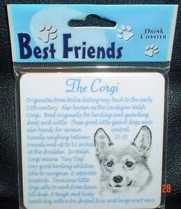 Lovely Corgi Coaster