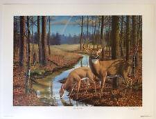 After the Rain by Randy McGovern Art Print 801/1500 Hunt Deer Wildlife 25.5x19