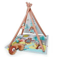 Skip Hop Camping Cubs Baby Play Activity Gym