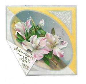 A Happy Xmas and Glad New Year White & Pink Flowers Christmas Vict Card c1880s