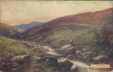 Dartmoor near okery bridge Tucks oilette 7633