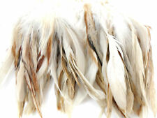 "100+ WHITE UNIQUE VARIANT ROOSTER SCHLAPPEN FEATHER 5""-7""L"